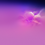 galaxy s10 official wallpapers
